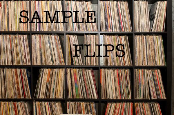sample flips
