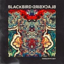 88. Blackbird Blackbird - Tangerine Sky