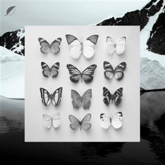 91. Christian Loffler - Young Alaska