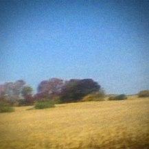 8. Sun Kil Moon - Benji