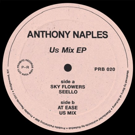 100, Anthony Naples - Us Mix EP