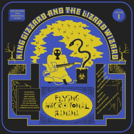92. King Gizzard & The Lizard Wizard - Flying Microtonal Banana