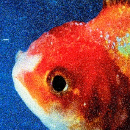 38. Vince Staples - Big Fish